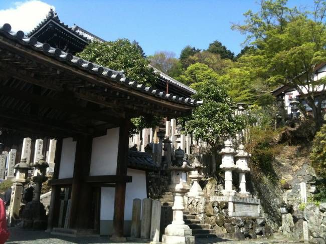 """Удивительный буддийский храм Тодай-дзи в Японии   """"Secret worlds"""""""