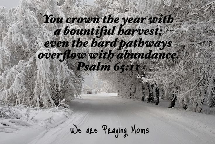 """You crown the year with a bountiful harvest, even the hard pathways overflow with abundance."" Psalm 65:11"