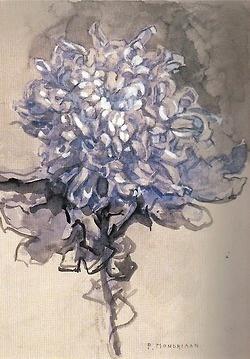 Piet Mondrian - Chrysanthemum (1909)  colourthysoul: