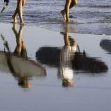 Jugendreise Frankreich: Surfcamp in Le Pin Sec