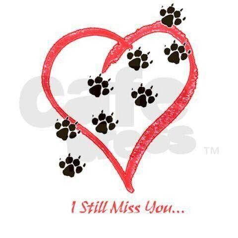 Bijna 7 maanden uit mijn leven... Maar je bent er toch nog elke dag dikke van mij... Ik denk altijd aan je elke dag.