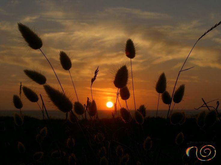 Soleil couchant sur l'horizon - Ile Grande