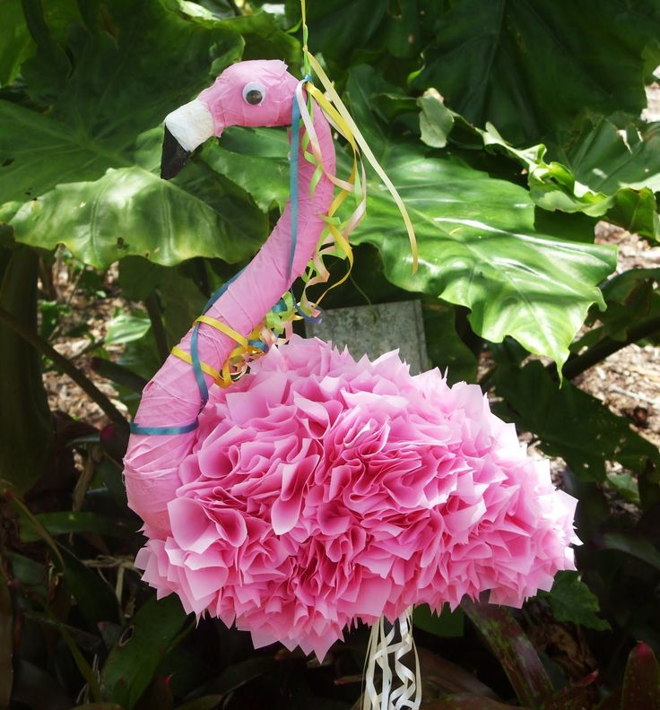 We're all wild here ...: Flamingos obtain their pink color from eating shrimp -