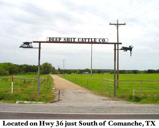 Texas ranches--we have seen this for years going up hwy 36 to Abilene...was even on the Channel 2 travel show-Texas Country Reporter