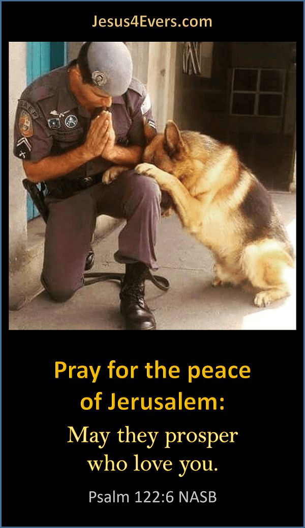 Pray for the peace of Jerusalem: May they prosper who love you. Psalm 122:6 NASB   We can draw great comfort in knowing we can stand on the truth of God's word.    http://www.jesus4evers.com/?p=5881