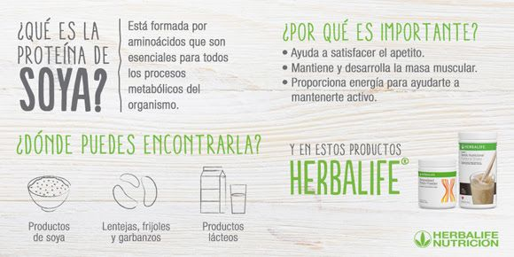 Proyecto Mamá Herbalife Chile: Ingredientes de los productos Herbalife