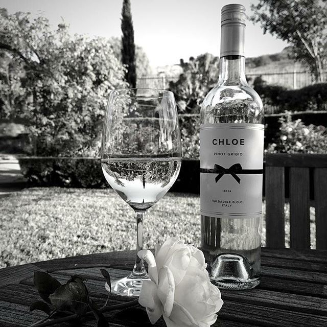 A gorgeous Saturday spent with the crisp tastes of Chloe Pinot Grigio. #wine #winetasting #winelover #whitewine #pinotgrigio #elegant #classy #ClassicBeautyBottled