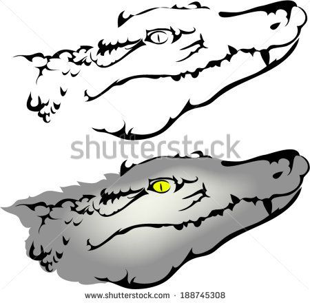 61 Best Images About Crocodile Tattoo Outline On Pinterest