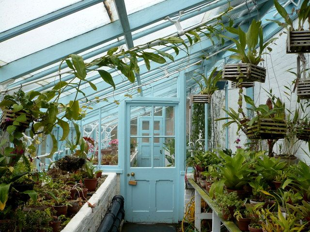 PAM - Darwin's greenhouse, Down House