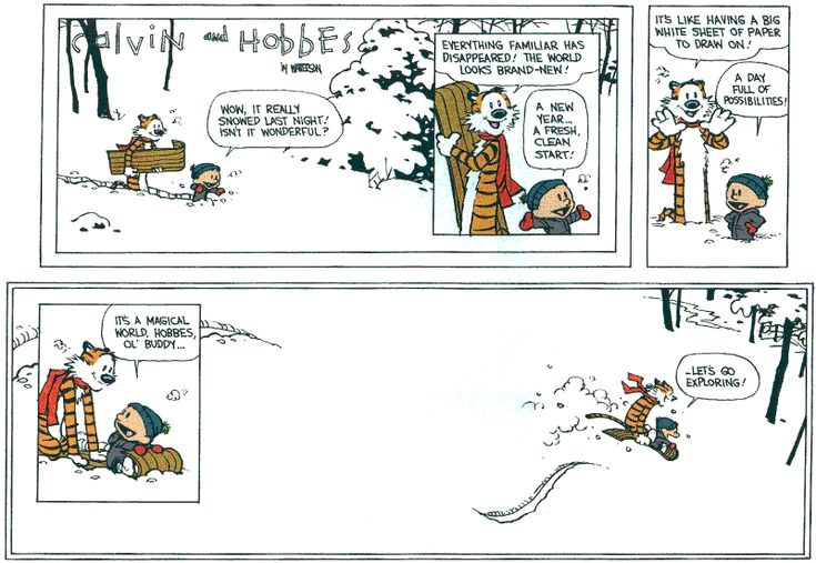 Great cartoon to share with your grads...this was the last ever Calvin & Hobbes comic from the popular series...
