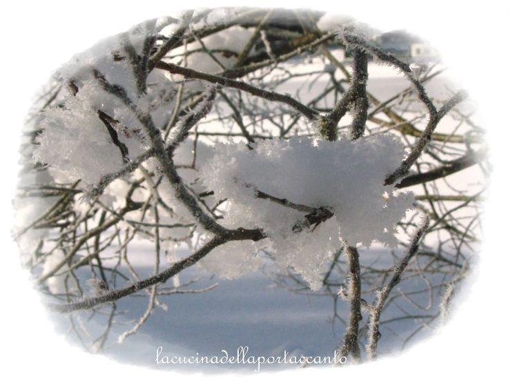 Neve <3