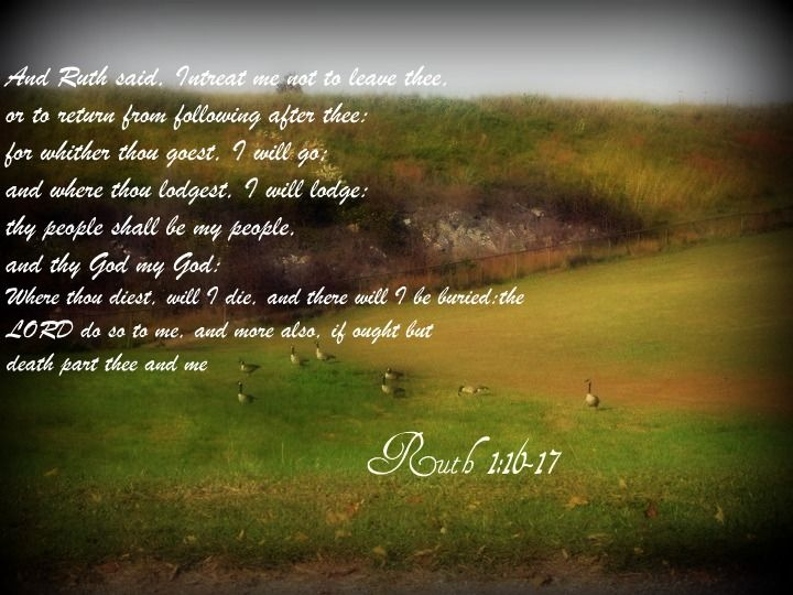 Ruth 1 16 17 KJV | ruth 1 16 17 and ruth said intreat me not to leave thee or to return ...