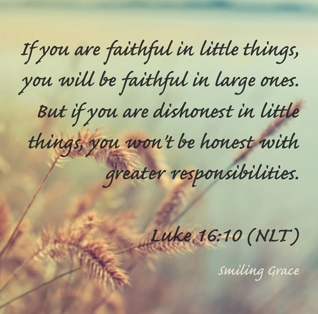 "So for the past few months God has been working on something in my life.  He has been working on my diligence.  Luke 16:10 tells us, ""If you are faithful in little things, you will be faithful in l…"