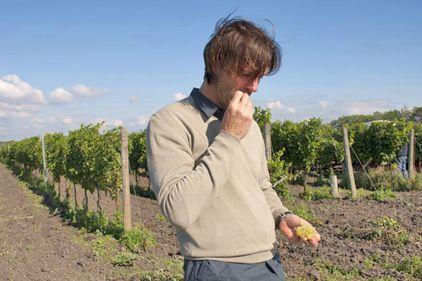 Heinz Velich mit einem Dessertwein, der die Erwartungen nicht ganz erfüllte.  Beerenauslese Seewinkel, 2007, Velich - http://www.dieweinpresse.at/beerenauslese-seewinkel-2007-velich/