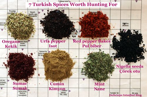 Key Turkish Spices by Olga Irez of Delicious Istanbul