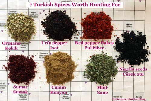 На самом деле, говоря о турецких специях, мы не должны думать, что при приготовлении блюд жители Турции добавляют всевозможные виды специй для придания специфического вкуса. Совсем нет. Никто не сможет сравниться с жителями Турции по правильному употреблению специй для блюд. Они научат весь мир КАК это надо делать...