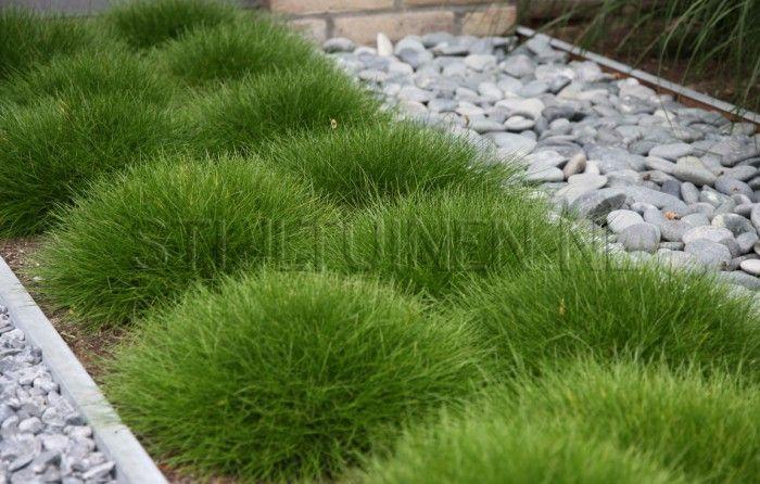 tuin-ideeën   leuk voor in de voortuin, gras met grind Door Pleuntjesblog