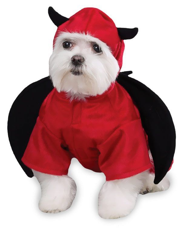 Undefined Pet Halloween Costumes Dog Costumes Dog Halloween