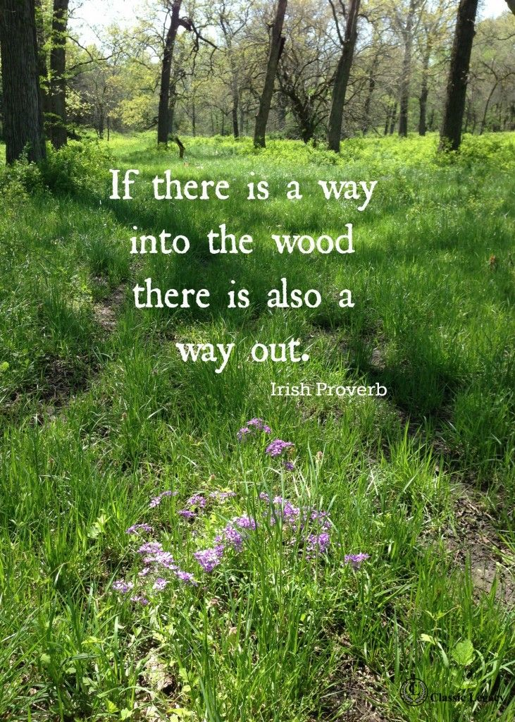 Irish Quotes If there is a way into the wood there is a way out.  This and 20 Irish quotes available for a free download.