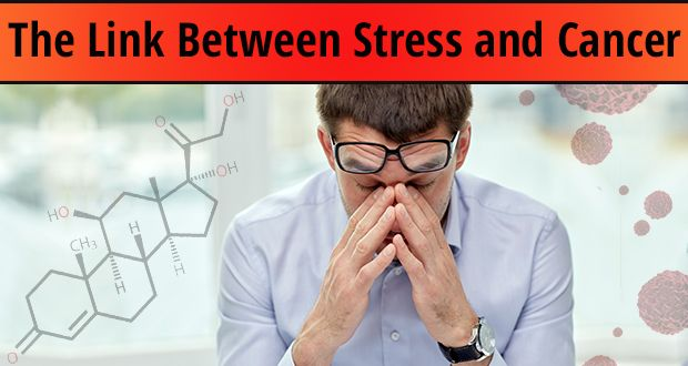 relationship of stress to the immune system and cancer
