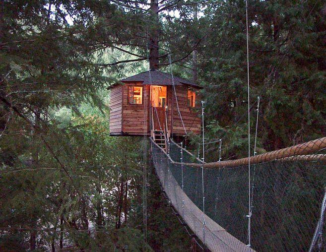 25 Trending Treehouse Hotel Ideas On Pinterest Amazing