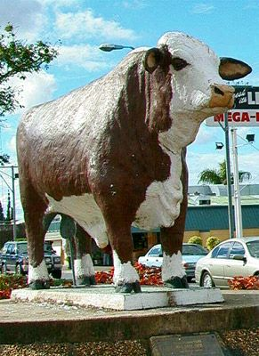 The Big Bull ~ Rockhampton QLD