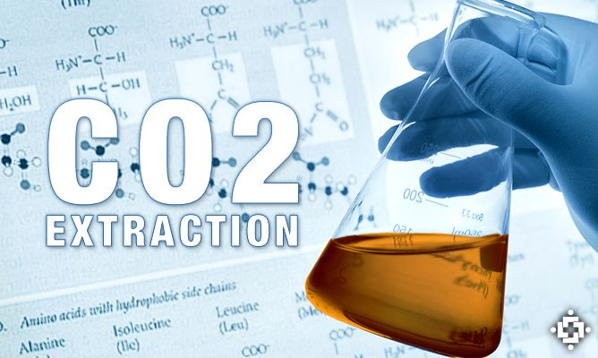 Supercritical Carbon Dioxide (CO2) Extraction: Pure Cannabis Oil