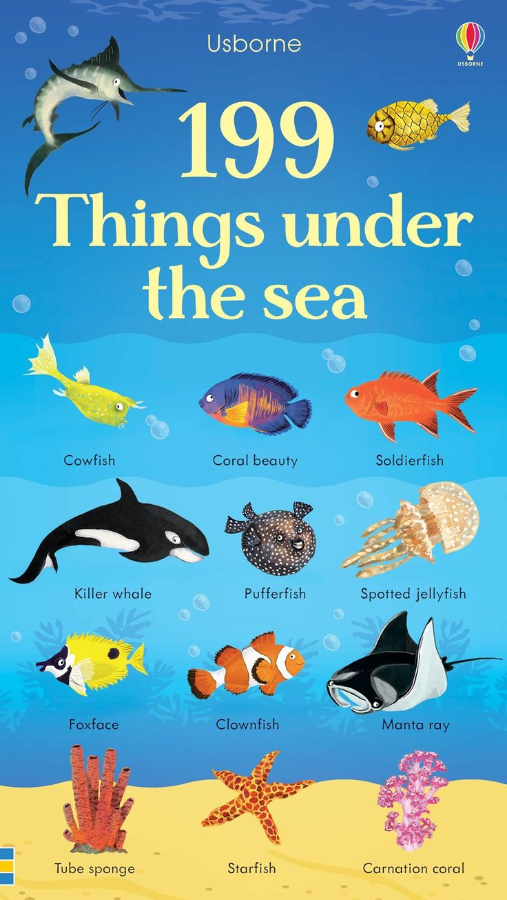 199 things under the sea New for November