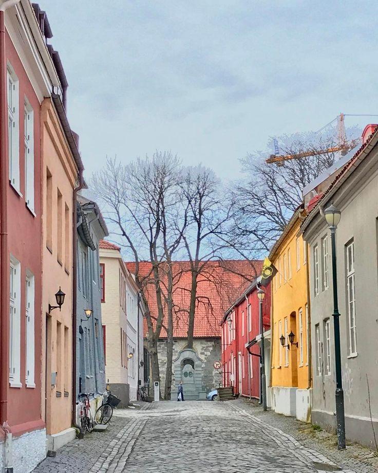 🌺🍃Mona Eidem🍃🌺 @monaeidem - One of Trondheim's small ...Yooying