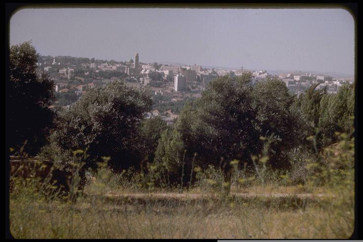 A view of Jerusalem, July 1950. Katcoff collection.