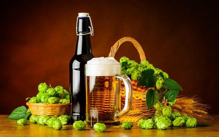 Download wallpapers beer, green hops, brown bottle, bottle of beer
