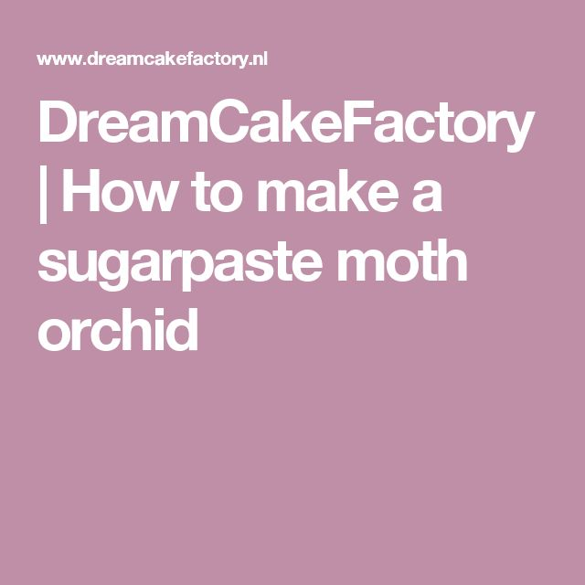 DreamCakeFactory |   How to make a sugarpaste moth orchid