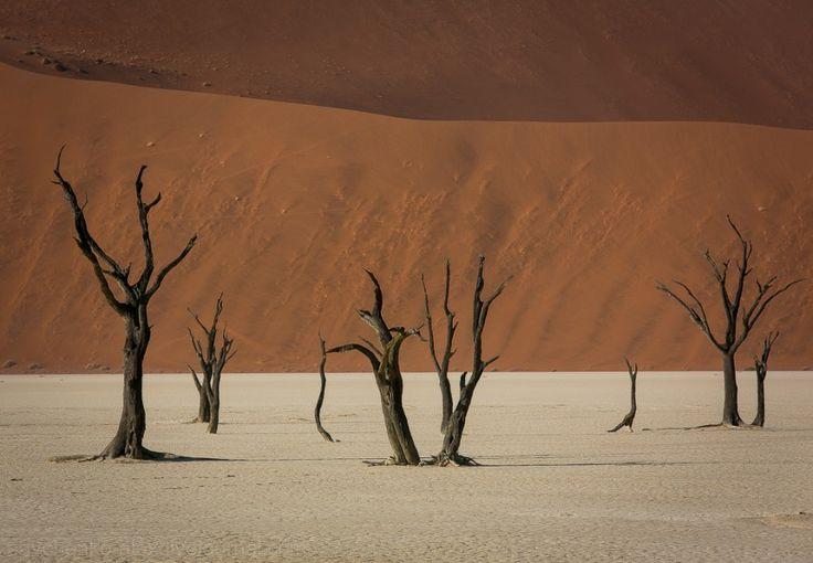 Sossusvlei09 Африка. Намибия. Пустыня Намиб   Соссусфлей