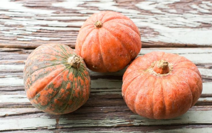 Organic Mini Red Kabocha Squash Trio