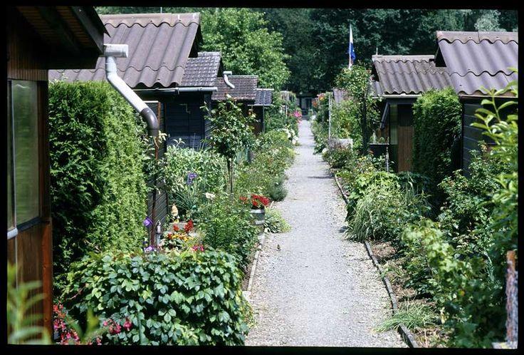 schrebergarten 900 610 allotment gardens bairros comunistas pinterest