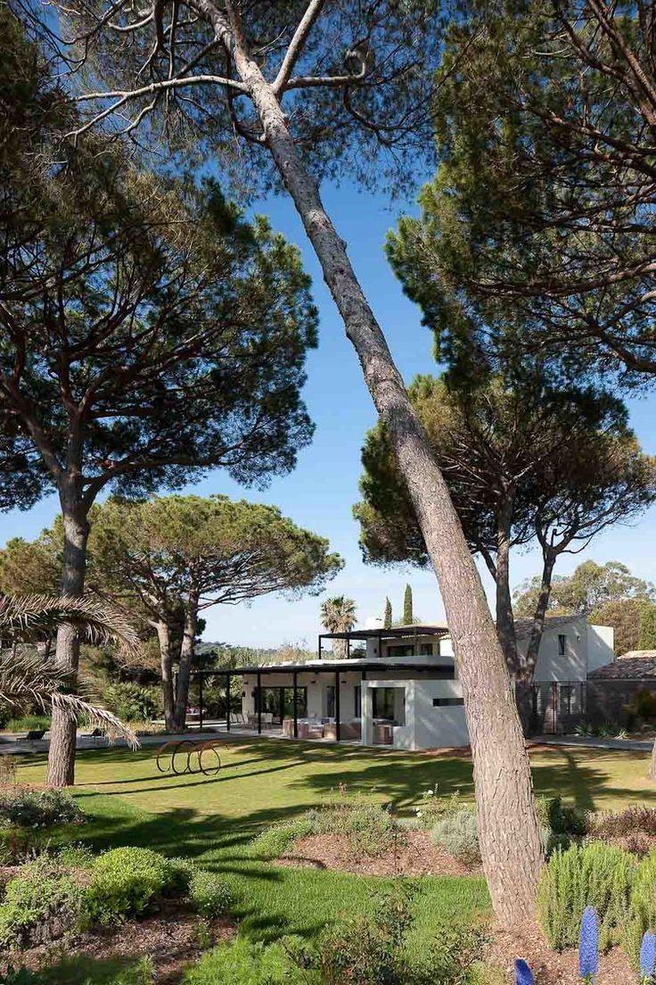 vincent coste architecte / villa w-p, st-tropez (paysage: nicolas bonnenfant et coloco)