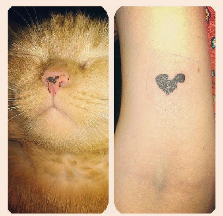 Show Us Your Pet Tattoos And Tell Us What They Mean To You