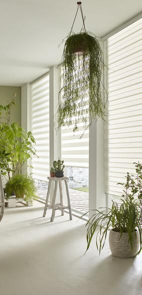 Intensions - day and night blinds, very handy!