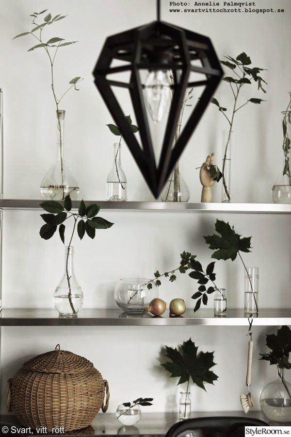 vas,flaska,gröna växter,hylla,kök,diy,do-it-yourself