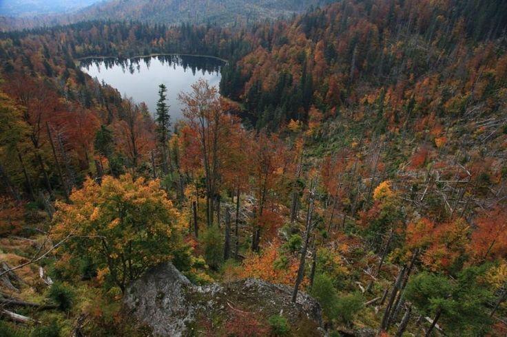 Roklanské jezero - Šumava