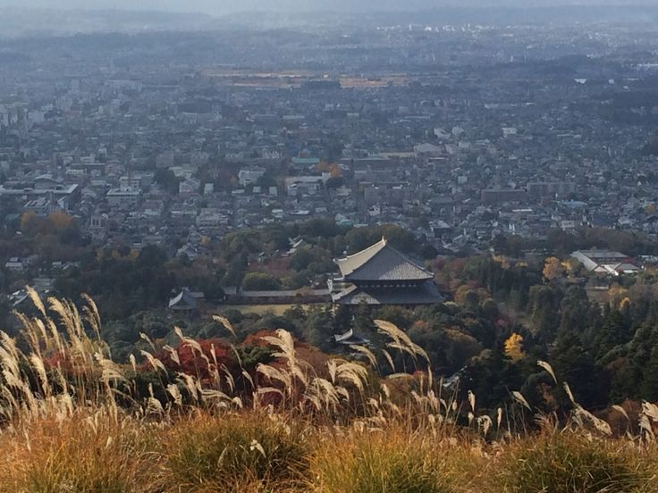 奈良公園 若草山