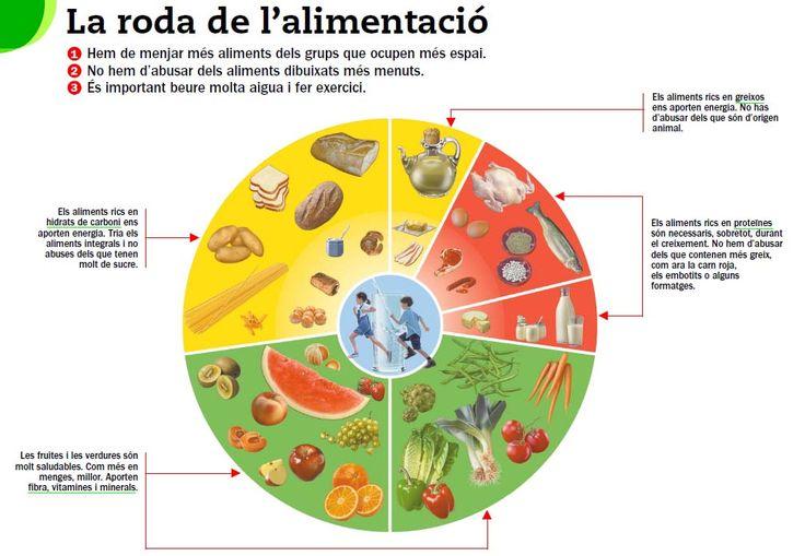 roda_aliments.jpg (1008×698)