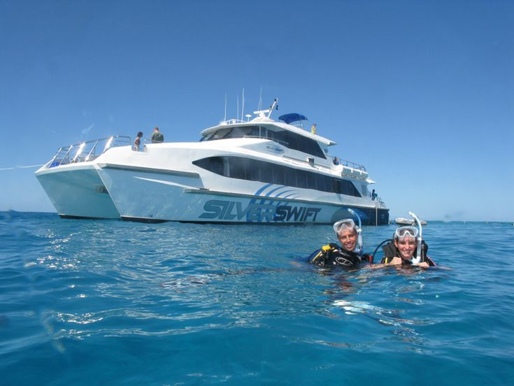 Silverswift Great Barrier Reef tours at from $210 Call Us 1300 731 620 For more info visit http://www.fnqapartments.com/tour-silverswift-great-barrier-reef/area-cairns/  #Silverswift  #cairns #reeftours #CairnsTour