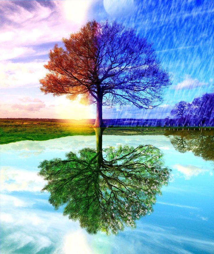#nature #magic #beauty...PUSH and choose ...Image 1 of 12