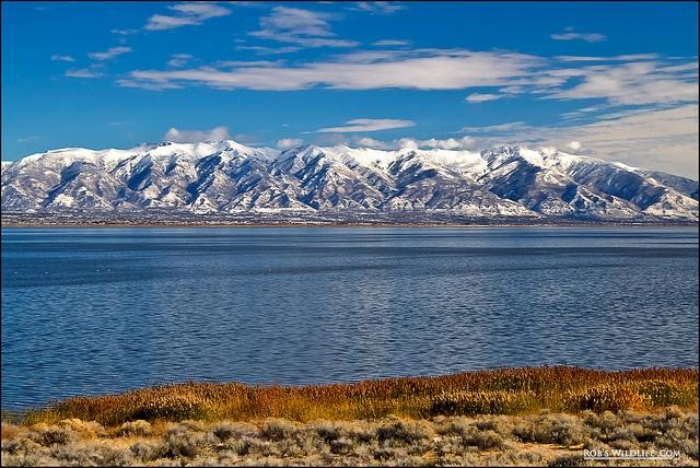 Great Salt Lake from Antelope Island State Park, Utah, by Rob Daugherty