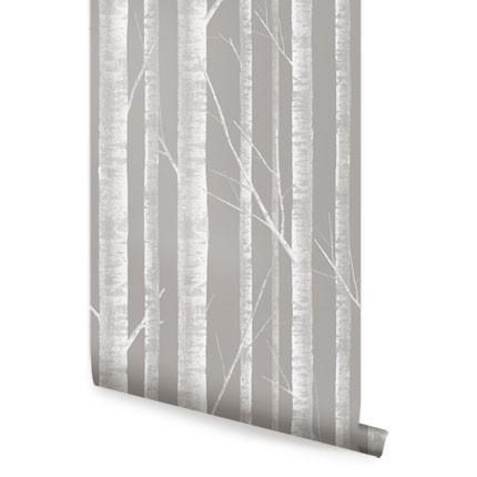 Birch Tree Wallpaper - Peel and Stick