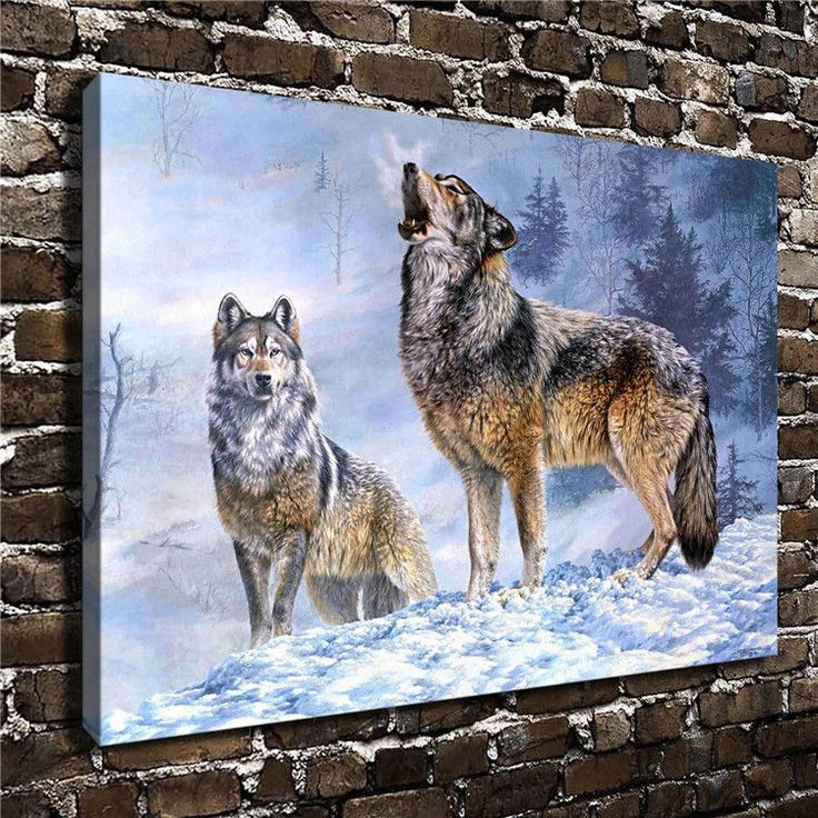 Canvas Hd Picture Print Art Painting Home Decoration, Snow Wolf 24''X36''