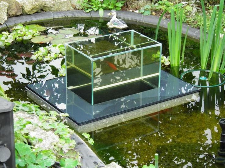 Floating Fish Koi Pond Observatory Lets You View Your Fish Above The Water Line