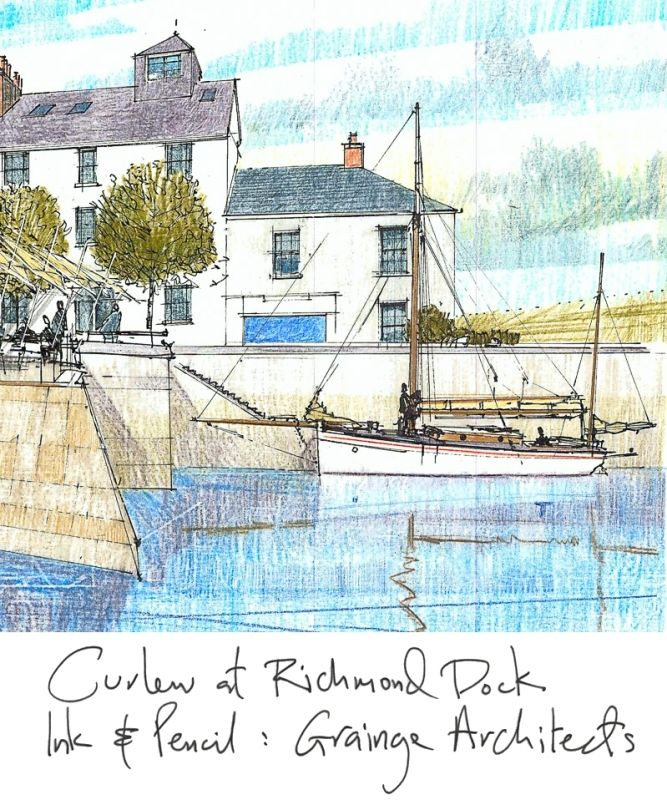 Richard Carman Sketches - Curlew at Richmond Dock