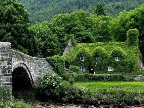 English cottage and stone bridge